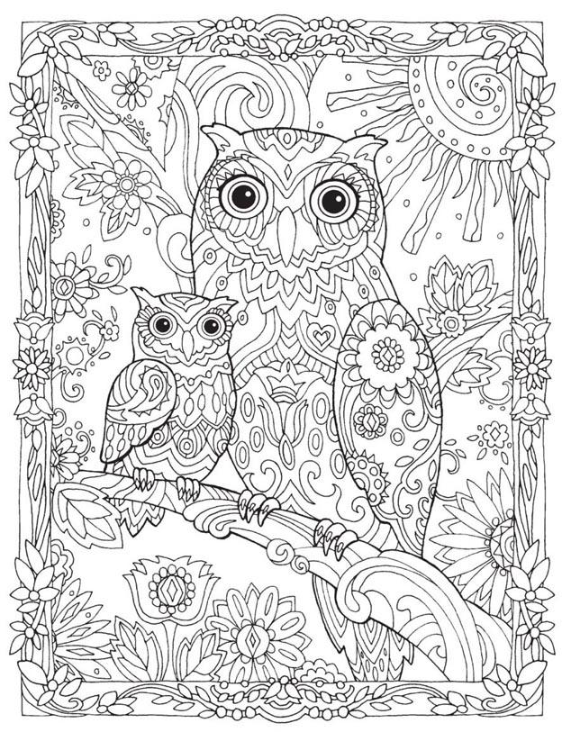 раскраска по номерам сова