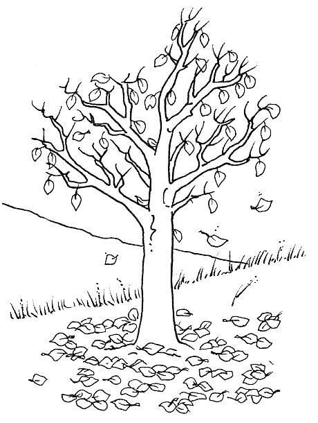 раскраска дерево с листьями распечатать бесплатно для детей