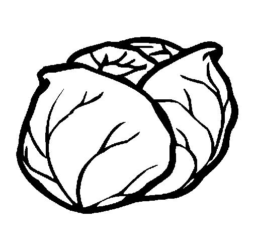 Раскраска капуста овощи