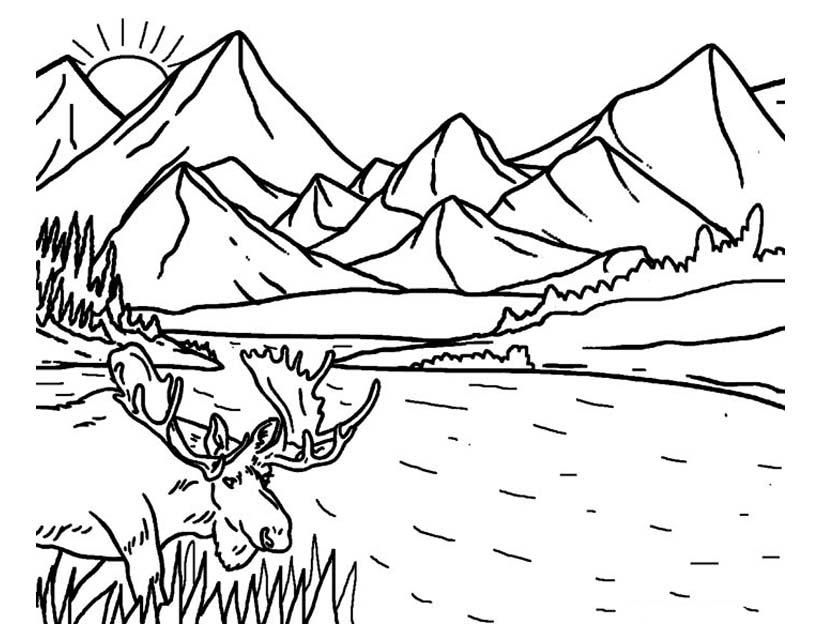 Раскраска антистресс пейзаж распечатать
